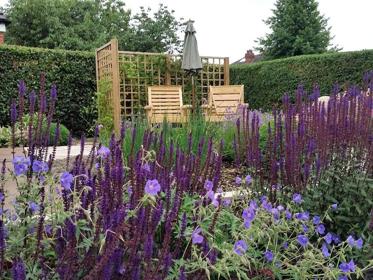 #gardendesign #staffordshire #cheshire #shropshire #gazebo #decking #paving #plants #boxballs #englishgarden #plantcombinations #plantingdesign