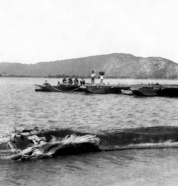 Bahia de Guanica, c1899.