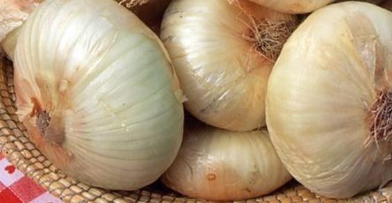 Biodiversità alimentare: le 5 varieta' di cipolla da riscoprire