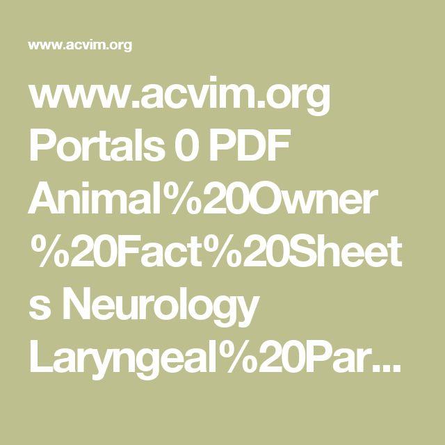 www.acvim.org Portals 0 PDF Animal%20Owner%20Fact%20Sheets Neurology Laryngeal%20Paralysis.pdf