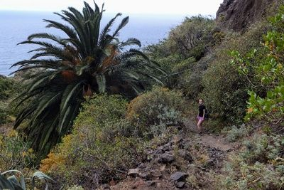 Hiking in Anaga mountains, Tenerife, Canary Islands