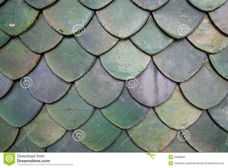 Fish Scale Roof Tiles Architecture Inspiration Fish