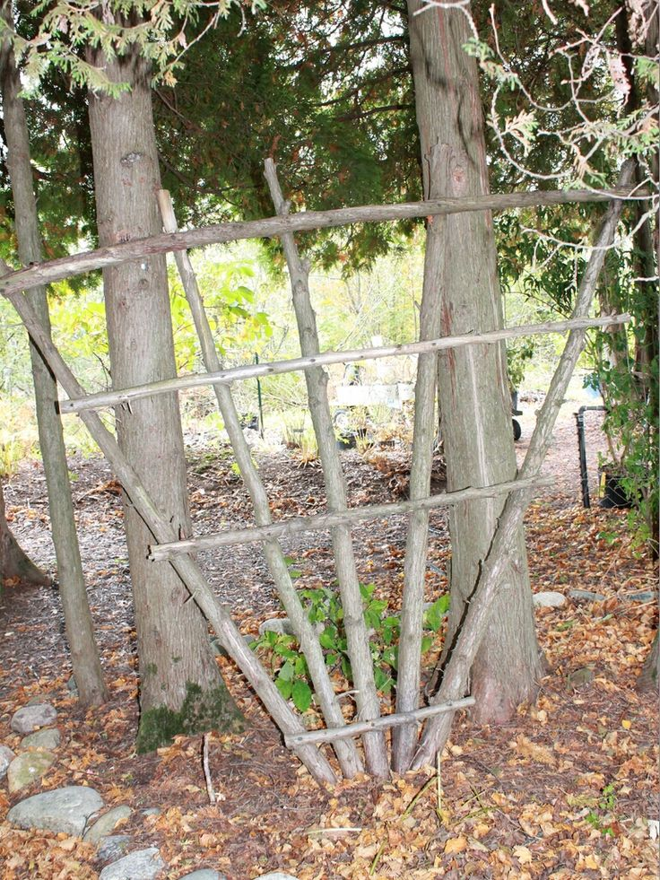 Trellis made of branches garden craft ideas made from for Garden trellis ideas