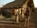 Ongeveer 7000 jaar geleden woonden de eerste boeren in ons land. Ze woonden op een vaste plaats en verbouwden gewassen op hun akkers. Het hoort bij de samenleving.