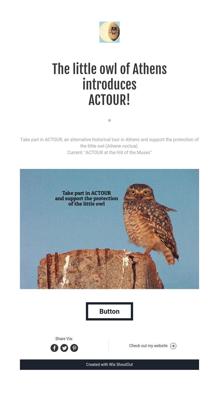 """""""The little owl of Athens"""" introduces ACTOUR!"""