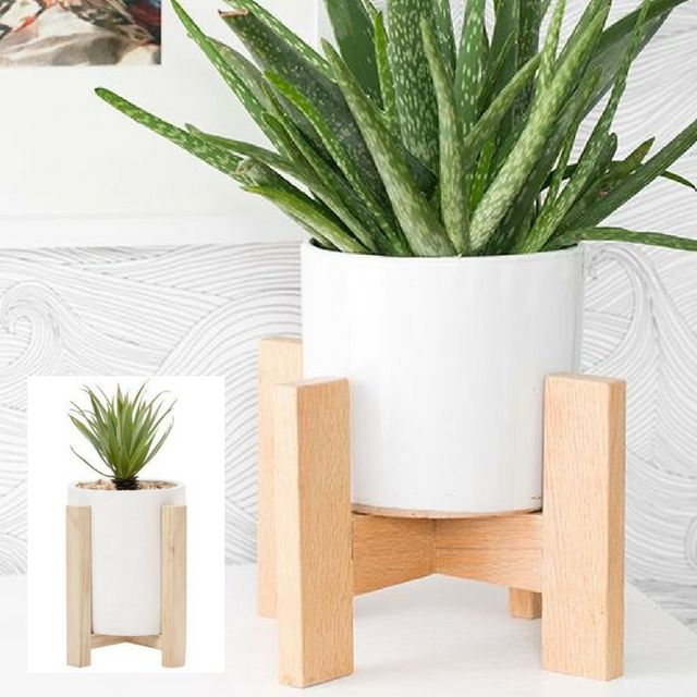 #GettheLook with the #Living & Co #LimitedEdition #Habitat #Cement #Planter with Stand in White from @thewarehousenz. #thewarehousestyle #thewarehousenzhacks #NewZealand #thewarehousenz #interiors #house #styling #lounge #shopthetrend #home #decor #luxeforless #Photo by 100 Layer Cakelet #plants #plant #indoorplant #gardening