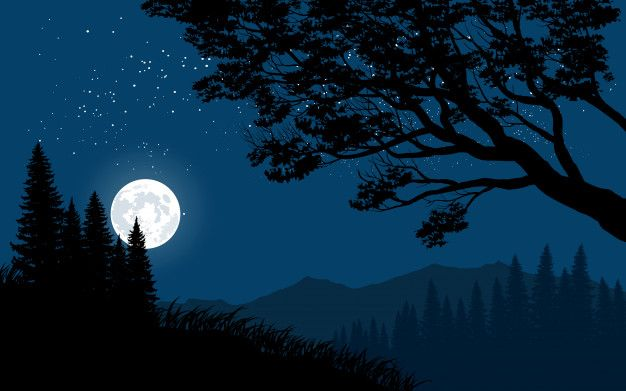 Mountain Night Landscape With Full Moon In 2020 Full Moon