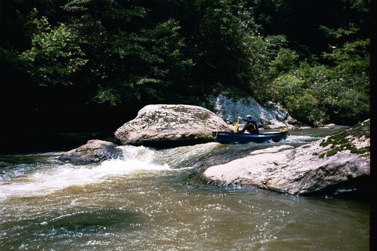 13 best fishing in north georgia images on pinterest for Fly fishing north georgia