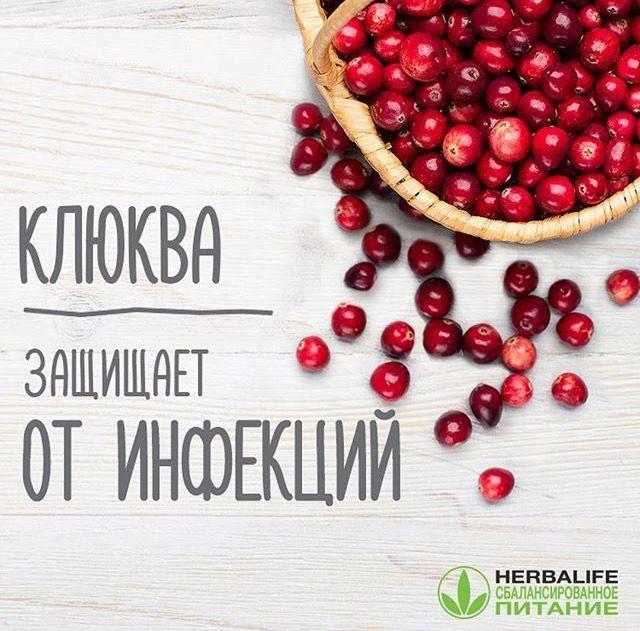 Эта маленькая кислая #ягода богата витаминами (особенно С, PP, К1 и группы В), калием, фосфором, кальцием, а также органическими кислотами и антиоксидантами. Такой состав позволяет клюкве #встать_на_защиту организма от инфекций. Также #клюква улучшает #пищеварение, уменьшает уровень «плохого» холестерина и эффективно борется с воспалениями. Кроме того, людям, снижающим #вес, клюква пригодится в качестве замены соли: если добавить #клюквенный_сок или сами ягоды в пищу, #еда не будет казаться…