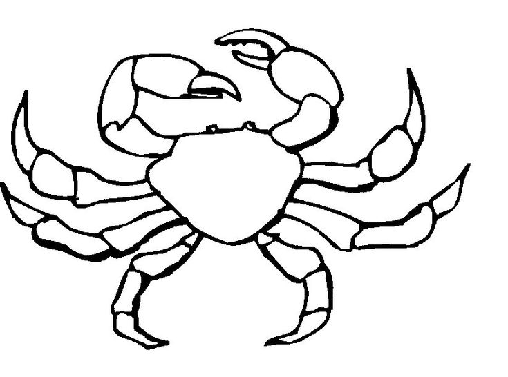 Free Printable Crab Coloring Pages For Kids Animal Coloring Pages Mandala Coloring Pages Fish Coloring Page