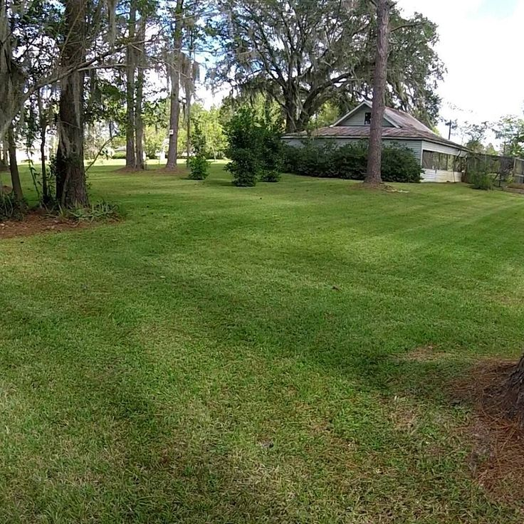A vacant property we take care sitting on the lake. Cut with our Gravely and Ferris mowers. Trimmed with our Echo trimmers.  Follow us  #echomeansbusiness #ECHOUSA  #uagpro #lawn #mowing #landscape #landscaping #lawncare #trimmer #blower #gravely #ferris #lawnbusiness #yardwork #trimming #veteran #veteranowned #armyveteran #armyretired #lawnbusiness #zeroturn #walkbehind #amsoil #outdoorpowerequipment #jandjlawnservice #beautifyingamerica #lake #property