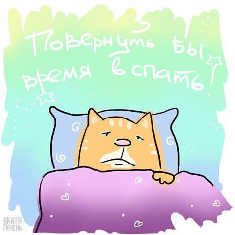 Катя Печень: кот, иллюстрация, сон, спать, игра слов