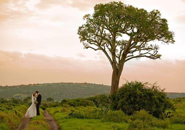 Get married on the Sunshine Coast at Sibuya Game Reserve & Lodge.