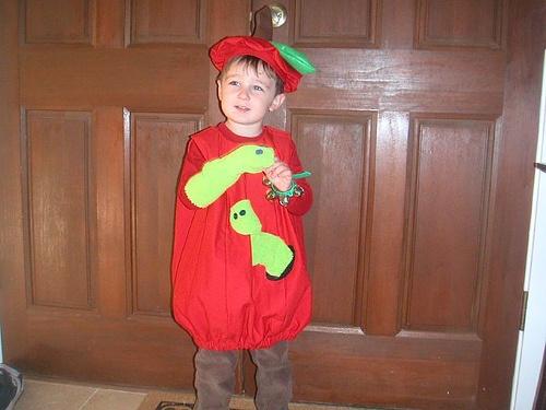 Wearing Apple Costume by Bob Doublebird, via Flickr