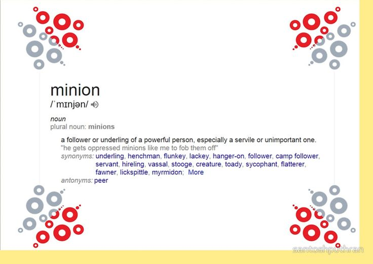 What is the meaning of minion