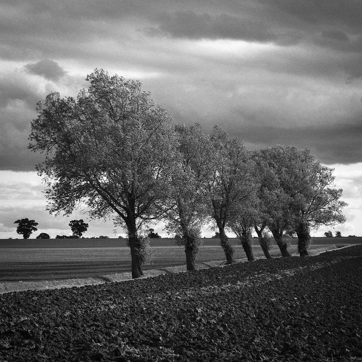 Walsham Le Willows, Black And White Signed Print
