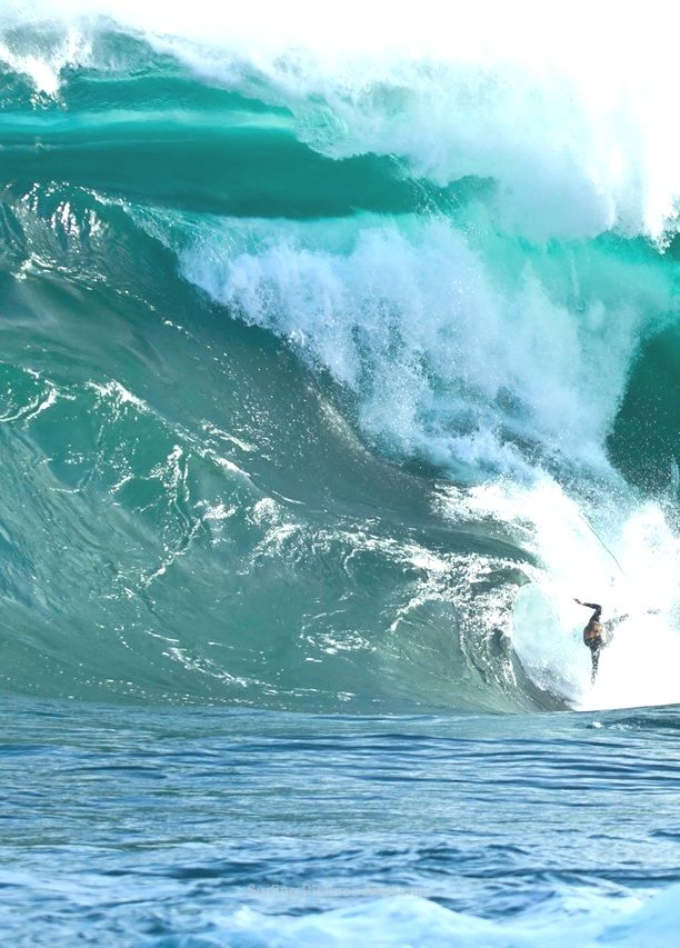 La Plus Grande Vague Du Monde Tsunami : grande, vague, monde, tsunami, Nazare, Portugal, Tsunami,, Surfistas