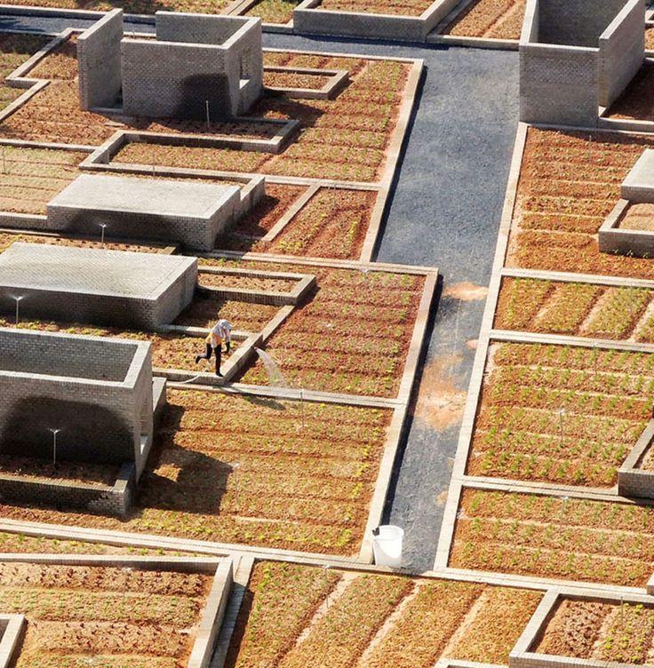 Thomas Chung · Value Farm