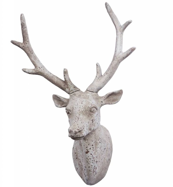 Zeer aparte hertenkop om uw muur, schoorsteen of hal een ander aanzien te geven.
