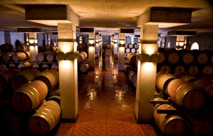 Steenberg Vineyards, 2011 Best Of Wine Tourism: the downstairs maturation cellar Cape Town