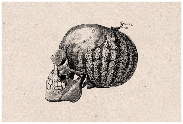 Melon head illustration for The George (formerly the Fruiterer). Design by United Creatives.