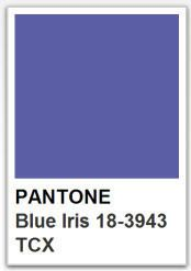 PANTONE 18 3943 Blue Iris / Color of the year 2008