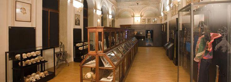 Il Museo di Antropologia criminale