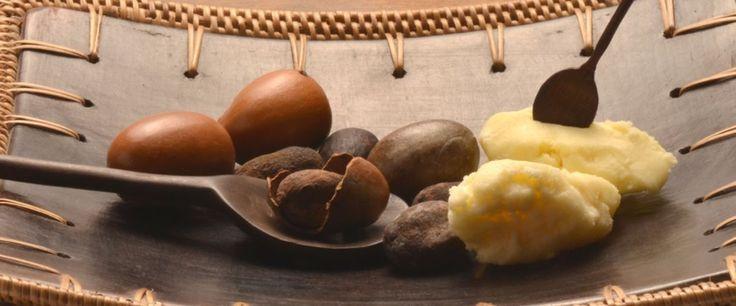Το βούτυρο καριτέ (shea butter) αποτελεί ένα υπέροχο φυσικό προϊόν με εκπληκτικές ιδιότητες, που προσφέρει αναρίθμητα οφέλη!