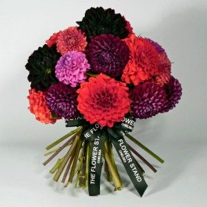 Just Dahlias in various Colours.