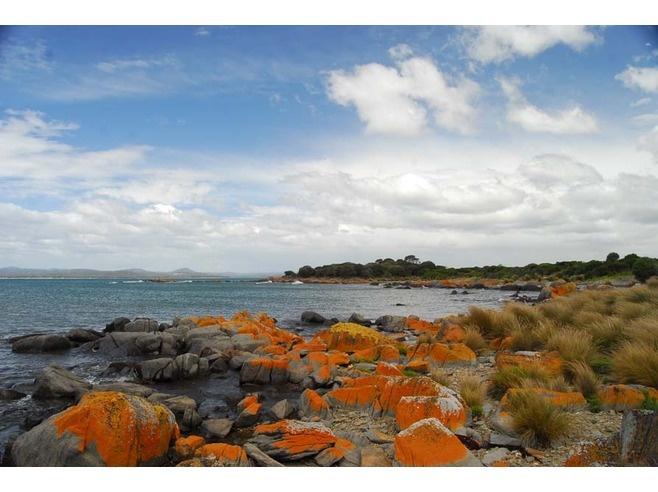 Larooma Park, Port Sorell, Tasmania, Australia #virtualtourist