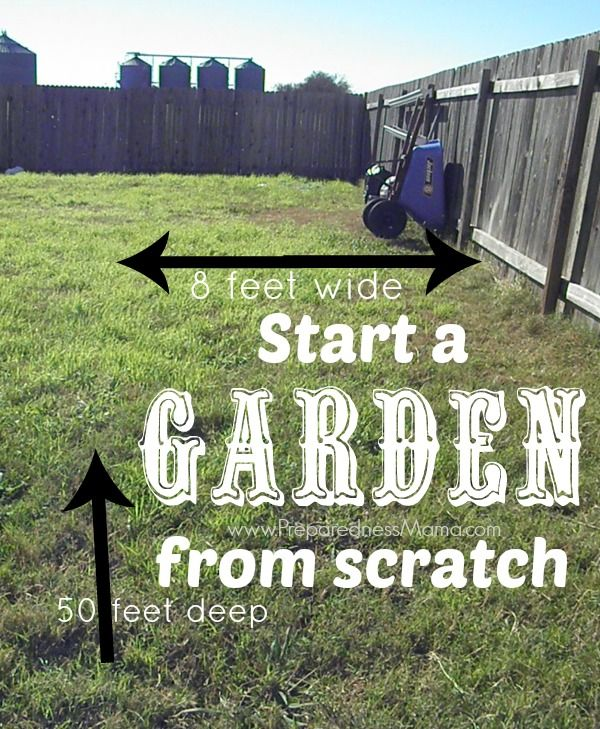 Start A Garden From Scratch. Iu0027 Have An Area 8x50u0027 To Work With