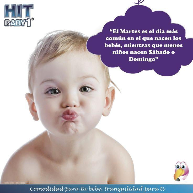"""""""El Martes es el día más común en el que nacen los bebés, mientras que menos niños nacen Sábado o Domingo"""" Feliz #Lunes #niños #curiosidades #bebés #reciénnacidos"""