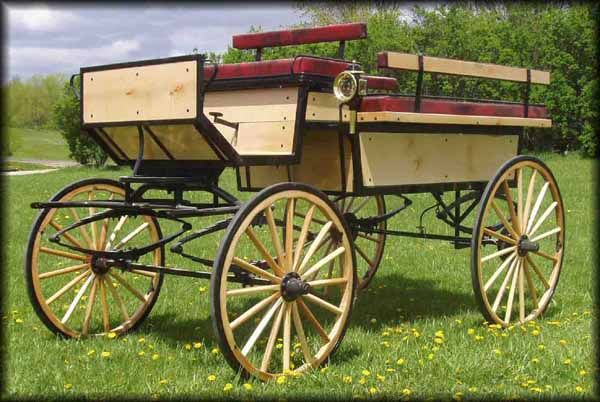Justin Carriage Works - Rear Entry Horse Drawn Wagonette Break Beautiful, though I want to train my future bull to pull it.