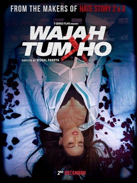 Wajah Tum Ho 2016 Hindi 720p pDVDRip 700MB Download Free Movie