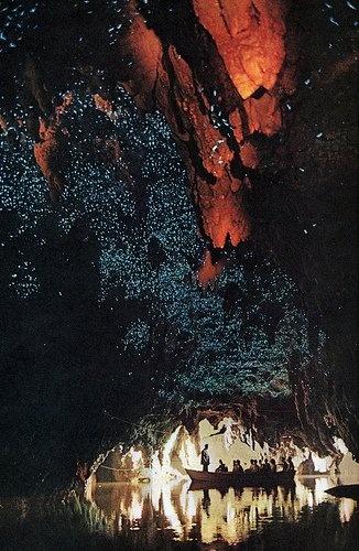 Waitomo Glow Worm caves, New Zealandmost amazing adventure ever!