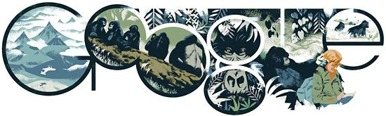 If you visit Google today, in virtually all Google home pages across the world, you will see a special jungle, mountains, gorillas logo with a picture of Dian Fossey.    Dian Fossey was born today, January 16th in 1932...