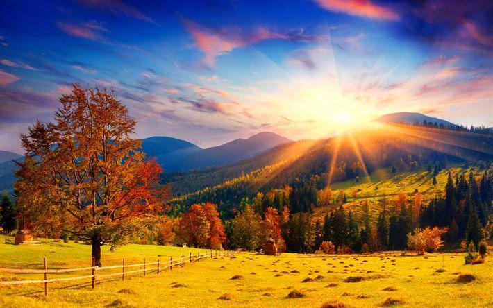 Scarica sfondi Autunno, Carpazi, montagna, foresta, tramonto, Ucraina, verdi colline