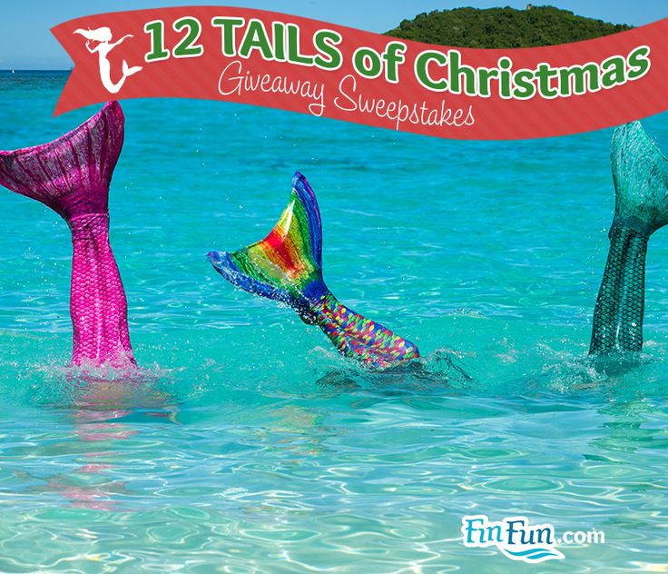 Image on FinFriends  http://www.finfunmermaid.com/blog/social-gallery/10808930-768475509854285-1607495663-s #12tailsgiveaway