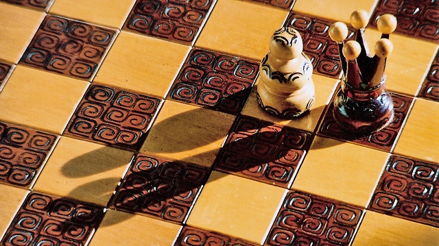 Know Your Team  A great chess player has a deep awareness of each piece's role on the board. A bishop has different abilities from those of a knight, and its powers are expanded or limited by a board's pawn structure.