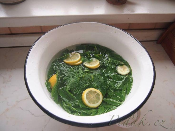 Výsledek obrázku pro mátový sirup recepty ze šumavské