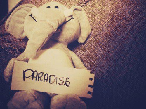 Mi paraíso es estar a tu lado.