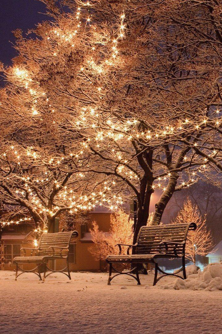 Christmas Lights Animated