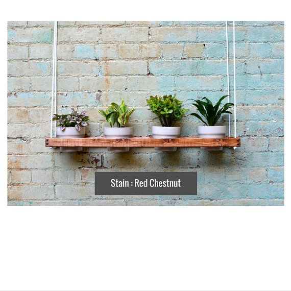 1 nivel colgante plantador de la pared interior por PinOakProjects