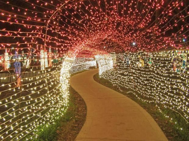 Lights, Christmas, ACTION! Blog About All The Christmas Light Events In The  Houston