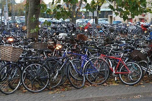 Cambridge bicycles - the only practical way to get around Cambridge