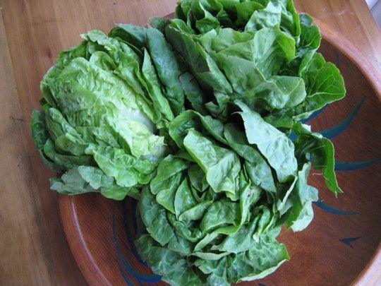 Good Eats: Little Gems Lettuce