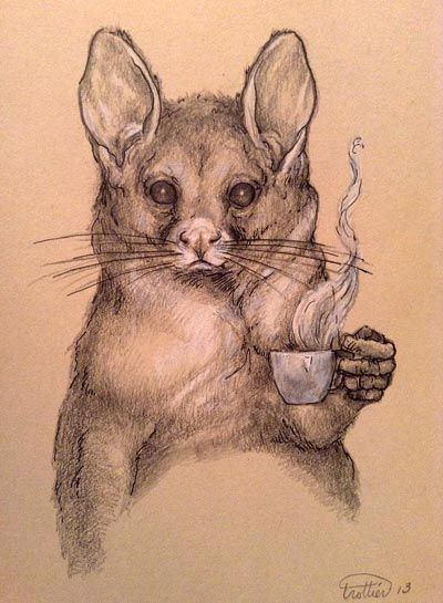 Possum and her tea. Original drawing by Jenifer Trottier