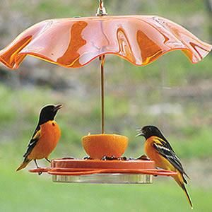 Awww, how cute - they look like they're at a cafe!  Would be lovely to have a few different coloured waffle plate 'shades' like this hanging from trees in the backyard.