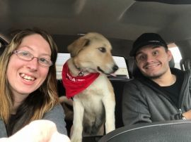 In January 2018 executive director, Meredith Ayan, and program manager, Lori Kalef, along with 8 volunteers travelled to Beirut, Lebanon, where 25 dogs were waiting to finish their long journey to the United States. As of January 24th each dog is safe and sound in their forever home with the loving soldier who rescued them and their family. Check out these fantastic updates we've received!