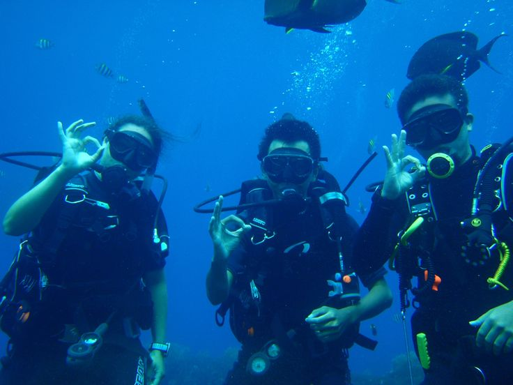 A minimum of three divers are required to run this dive trip. Single diver please Contact Us.